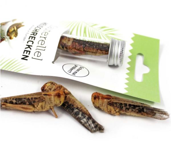 Heuschrecken - Sauterelle-Snack