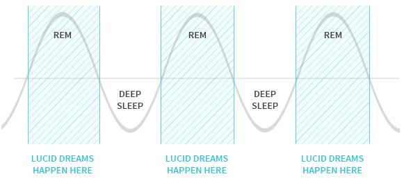 typical-sleep-cycle
